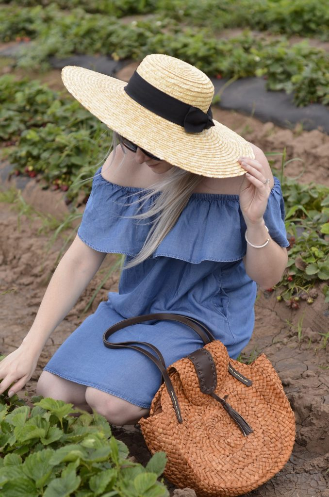 Sweet Berry Farm | San Diego Hat Co.| Strawberry Picking | Hi Lovely