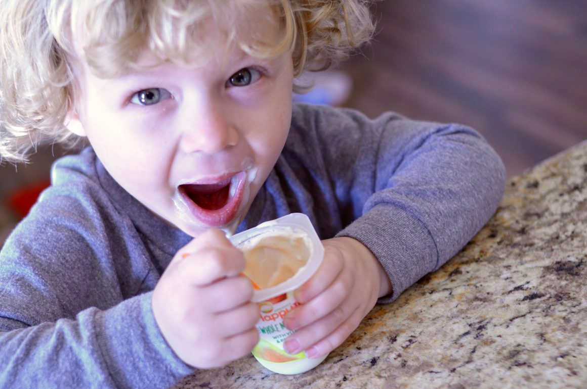 Happy Tot Yogurt | Target | Happy Family | Hi Lovely